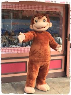 Wie dieser Affe heißt weiß ich leider nicht, auch nicht in welcher Serie/welchem Film der mitspielt. Sorry!