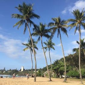 Der North Shore von Hawaii - Waimea Beach Park.