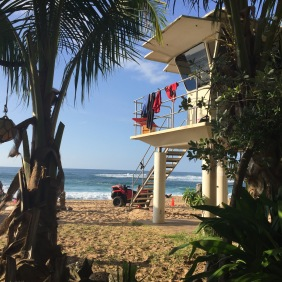 Der Blick von hinten durch's Gebüsch auf den Rettungsschwimmer-Turm am Waimea Beach Park.