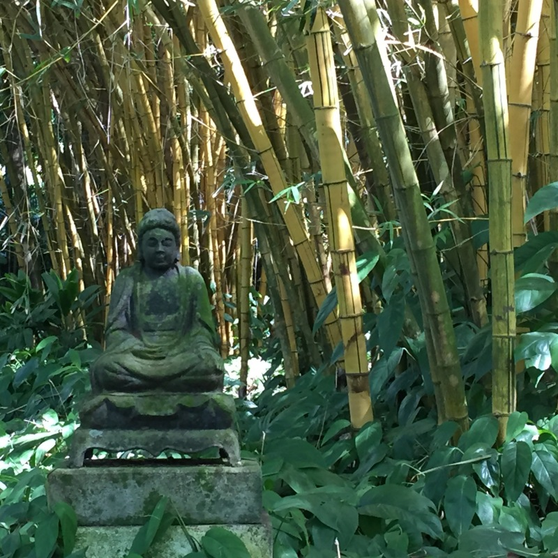 Ein Buddha mitten im Bambus im National Tropical Botanical Garden